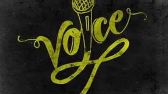 Voice copy