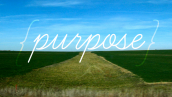 purpose.av.2