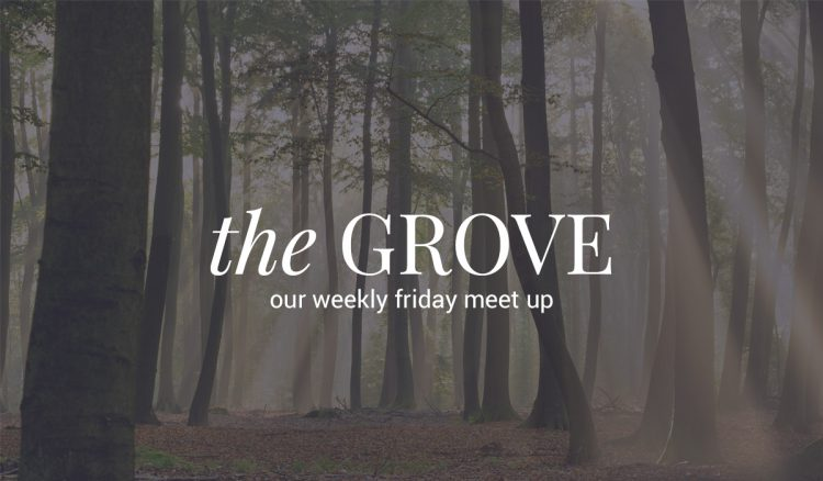 community-the-grove