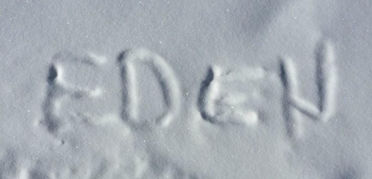 Eden in the snow