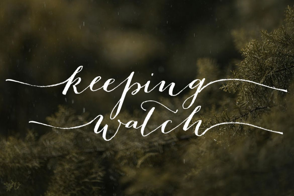 The Grove Word Prompt: Keeping Watch - Velvet Ashes