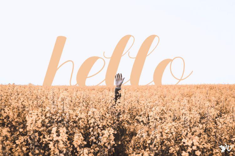 hello prompt