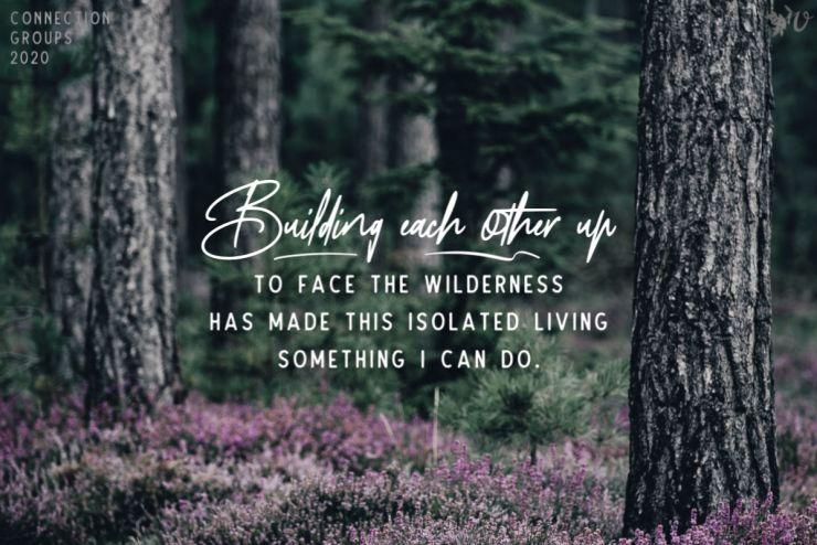 Alone in the Wilderness Together