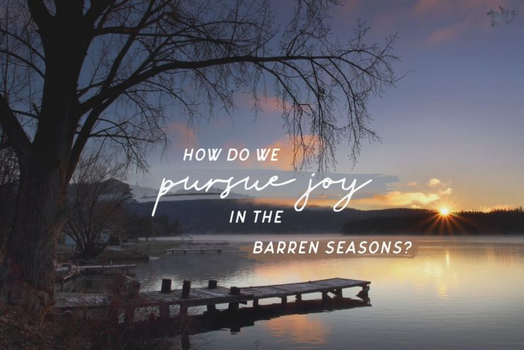 Joy in Every Season