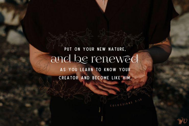 Release. Reform. Renew