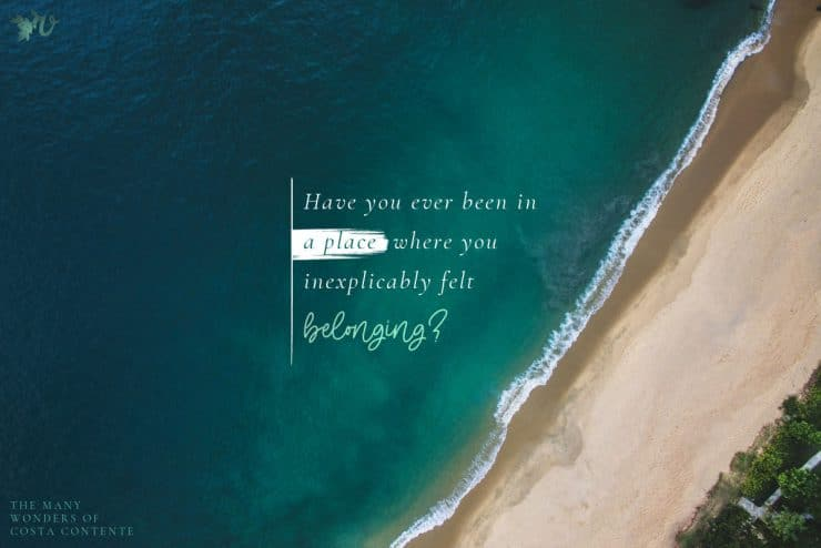 Belonging {Book Club}