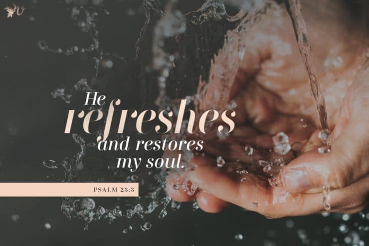 The Refreshing